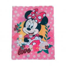 Coperta carte speciala 1 Minnie